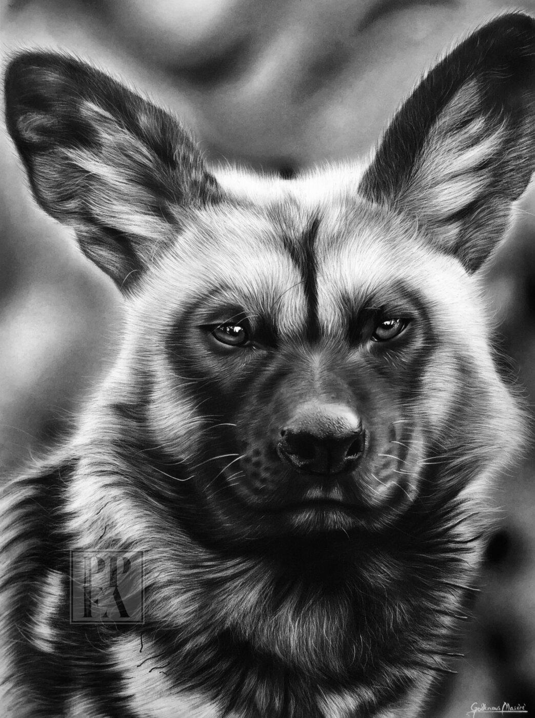 Alpha Wilddog by Godknows Masiri